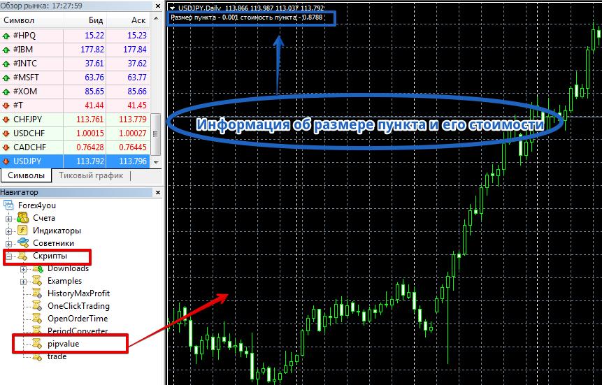 Скрипт размер пункта на форекс образует валютный рынок forex